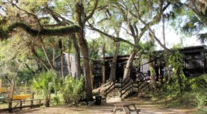 This Bizarre Restaurant In Florida Is Smack Dab In The Middle Of A Swamp But So Worth The Visit