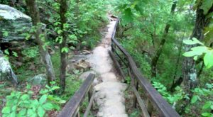 The Trail In Alabama That Will Lead You On An Adventure Like No Other