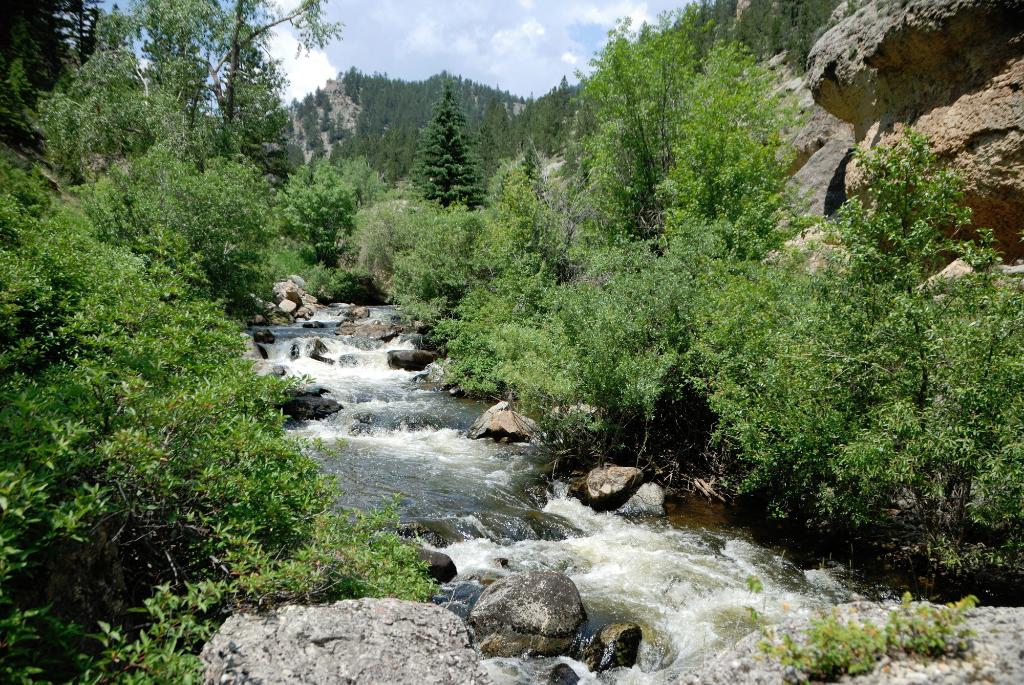 Crazy Woman Canyon Is A Hidden Gem In Wyoming