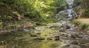 Few People Know This Amazing Natural Wonder Is Hiding In The Iowa Forest