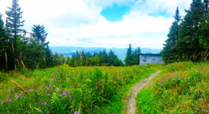 The Trail In Vermont That Will Lead You On An Adventure Like No Other