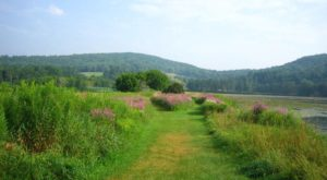 This Easy Hike In Vermont Is Perfect For A Spring Day