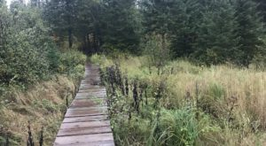 This Hike Takes You To A Place Minnesota's First Residents Left Behind