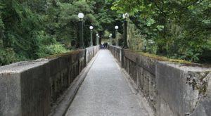 The Secret Garden Hike In Washington Will Make You Feel Like You're In A Fairytale