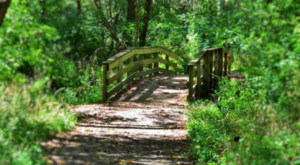 8 Low-Key Hikes In Indiana With Amazing Payoffs
