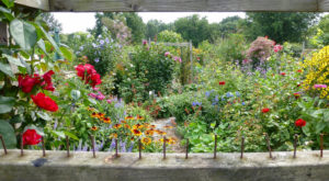 The Secret Garden Hike In Boston Will Make You Feel Like You're In A Fairytale
