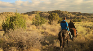 Take This Scenic Canyon Tour By Horseback In New Mexico For An Unforgettable Adventure