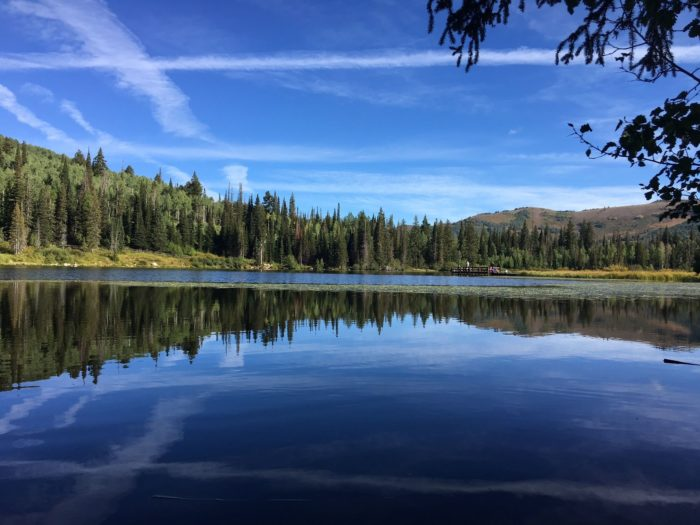 Silver Lake Loop In Big Cottonwood Canyon Is A Boardwalk Trail That S Perfect For Everyone