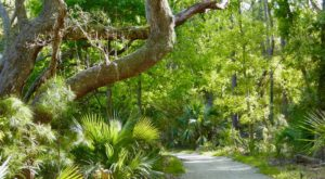 This Hike Takes You To A Place South Carolina's First Residents Left Behind