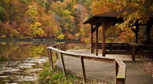 There's A Little-Known Retreat In The Middle Of An Indiana Forest And It Will Enchant You