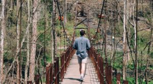 The Beautiful Bridge Hike In Maryland That Will Completely Mesmerize You