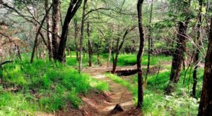 The Trail In Oklahoma That Will Lead You On An Adventure Like No Other