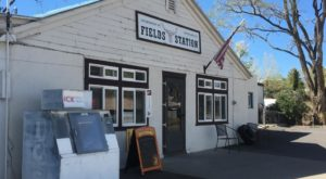 These 9 Roadside Restaurants In Oregon Are Worth Stopping For