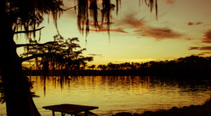 6 Lesser-Known State Parks Around New Orleans That Will Absolutely Amaze You