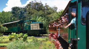 You'll Absolutely Love A Ride On Hawaii's Picturesque Plantation Train This Summer