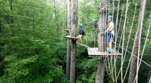 The Treetop Trail That Will Show You A Side Of West Virginia You've Never Seen Before