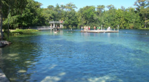 One Of The Largest And Deepest Freshwater Springs In The World Is Right Here In Florida