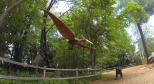 You Have To Visit This Incredible Dinosaur Forest In Massachusetts