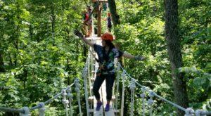 This Canopy Walk Near Cincinnati Will Make Your Stomach Drop