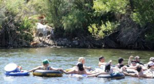 This All-Day Float Trip Will Make Your Arizona Summer Complete