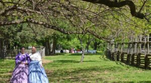 Travel Back In Time For An Authentic 1800s Luncheon At One Of Missouri's Most Beautiful Estates