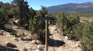 The One Incredible Trail That Spans The Entire State Of Nevada