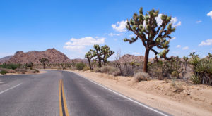 10 Roads With The Best Windshield Views In All Of Southern California