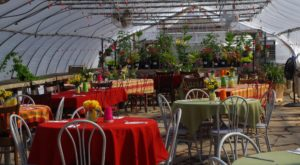 5 Seasonal Restaurants In North Dakota You Have To Visit While The Weather Is Warm