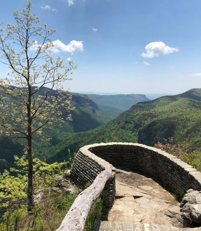 The Trail To Wiseman S View In North Carolina S Linville