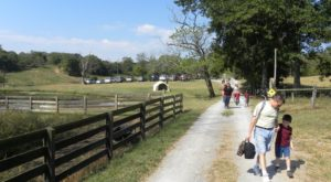You've Never Experienced Anything Quite Like This Unique And Historic Farm Tour In Nashville