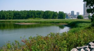 This Quaint Little Trail Is The Shortest And Sweetest Hike In Buffalo