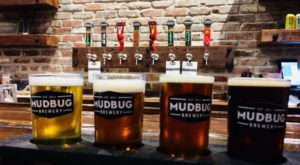 9 Craft Breweries In Louisiana You Don't Want To Pass Up