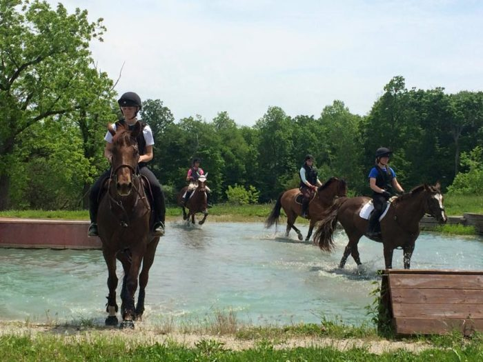 15 Horse Farms In Illinois Where You Can Learn To Ride