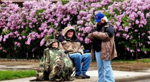 The Lilac Festival In Illinois That's Unlike Any Other