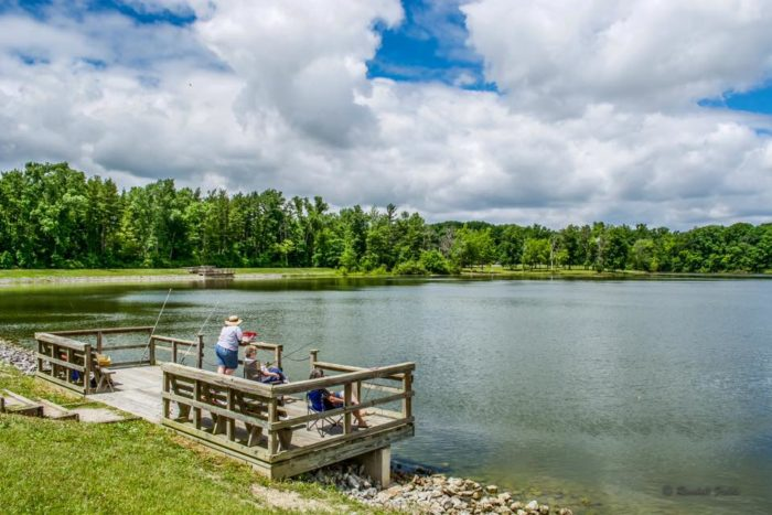 8 State Parks In Indiana For Scenic Views Hidden Lakes And Wildlife