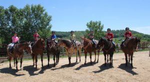 15 Farms In Illinois Where You Can Ride Horses All Day