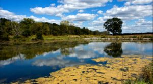 8 Lesser-Known State Parks In Indiana That Will Absolutely Amaze You