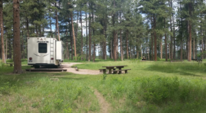 You'll Never Want To Leave This Secluded Pine Tree Campground In South Dakota