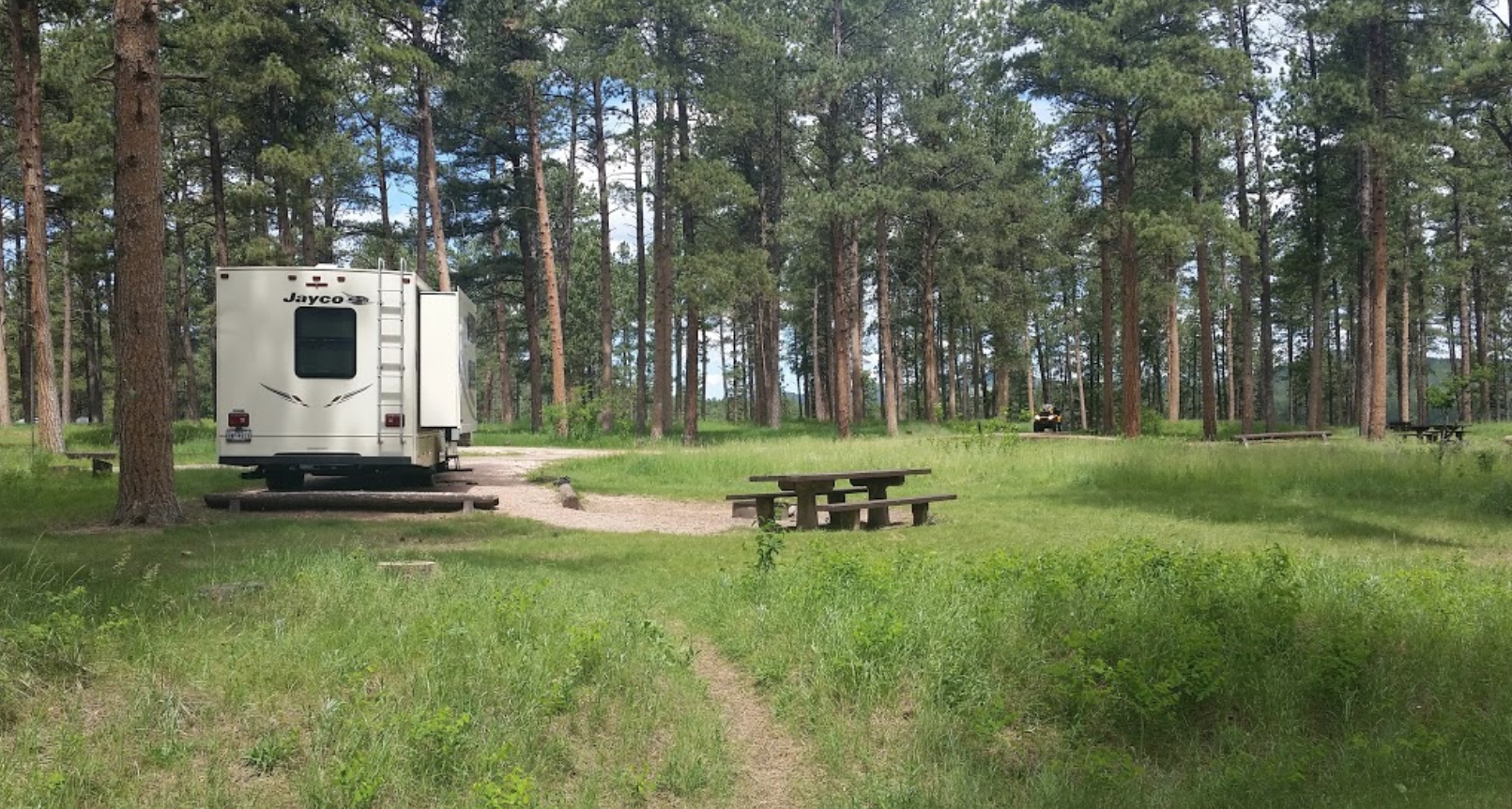 camp overnight at sheridan lake in a pine tree campground