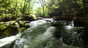 The Roaring River Spring In Virginia That Rivals Any Attraction In The World