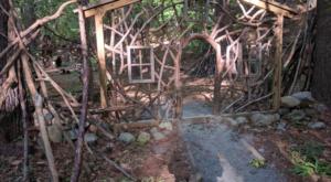 The Secret Garden Hike In Massachusetts Will Make You Feel Like You're In A Fairytale