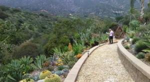The Secret Garden Hike In Southern California Will Make You Feel Like You're In A Fairytale