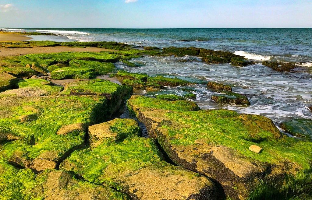 This Hidden Trail In North Carolina Leads To A Geologic Beach Wonder