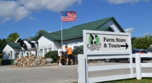 The Dairy Farm Tour In Michigan That Makes For A Perfect Family Day Trip