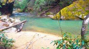 The Hike To This Gorgeous Kentucky Swimming Hole Is Everything You Could Imagine