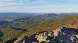 The Easy Trail In Virginia That Will Take You To The Top Of The World
