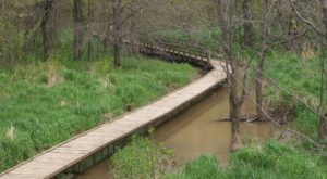 This Beautiful Boardwalk Trail In Missouri Is The Most Unique Hike Around