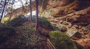 This Enchanting Hike Takes You Straight Through Kentucky's Very Own Grand Canyon