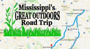 Take This Epic Road Trip To Experience Mississippi's Great Outdoors