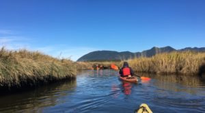 Take This Guided Kayak Tour In Oregon For An Unforgettable Experience